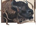 Wild and Woolly, Buffalo, Bison by Sandra Fazenbaker