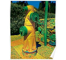 Collection: American Firehydrants: 2 Poster