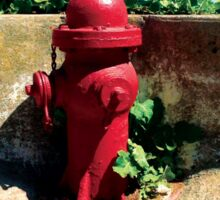 Collection: American Firehydrants: 3 Sticker