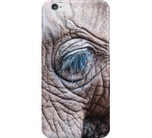 The Elephant Sanctuary 02 iPhone Case/Skin