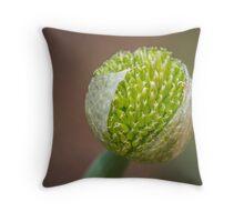 Family of the onion Throw Pillow
