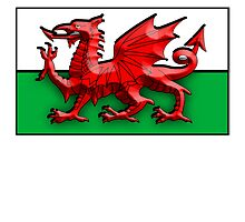 WELSH FLAG; FLAG OF WALES, RED DRAGON by TOM HILL - Designer