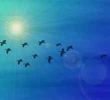 Flock of birds in a sunny sky by lucid-reality