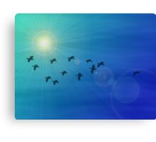 Flock of birds in a sunny sky Canvas Print