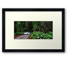 Big Trees, Compact Car Framed Print