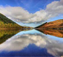 Lake Geirionydd  by Ian Mitchell