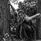 Crouching Tiger by Jarrett720