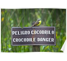 Watch Out, Bird! Crocodiles! Poster
