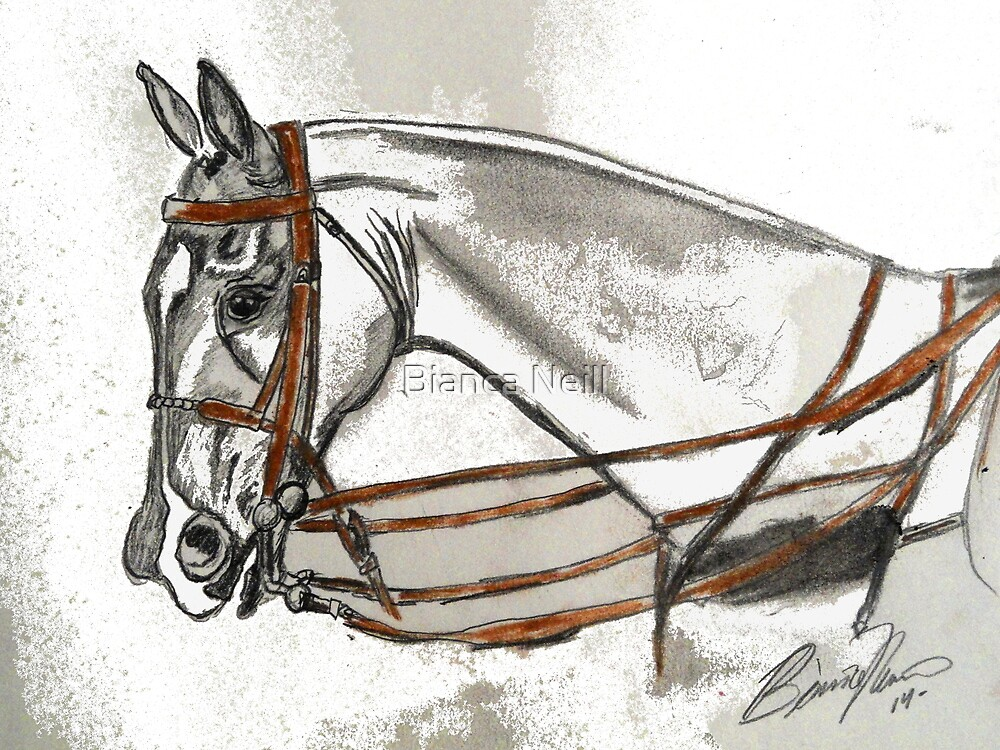 Polo match by Bianca Neill