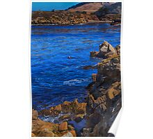 Point Lobos, California PCH Poster