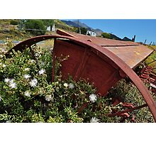 Resting plough Photographic Print