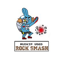 Mudkip Used Rock Smash Photographic Print