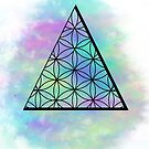 Triangle flower of life by indigotribe