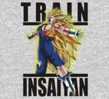 Train Insaiyan Super Saiyan 3 Vegito  by BadrHoussni