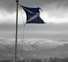 Sea,Snow,Sky and Saltire by Charles  Staig