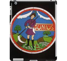 June i-pad case iPad Case/Skin