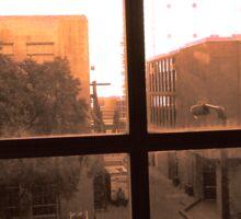 Window Dust Sticker