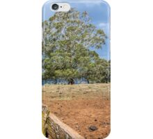 The Picnic Tree iPhone Case/Skin