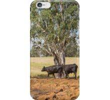Coolah Tops Cows iPhone Case/Skin