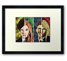 Doctor and Companions Framed Print