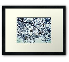 Things Aren't Always What They Seem Framed Print