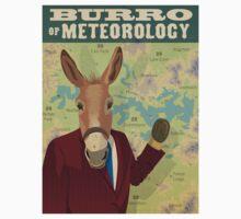 Burro of Meteorology - Sydney Kids Tee