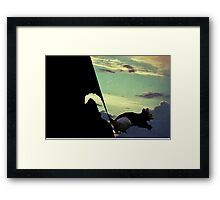 black squirrel  Framed Print