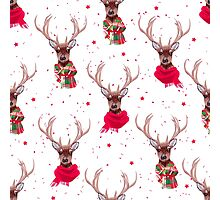 Graceful deer wearing stylish winter scarves Photographic Print