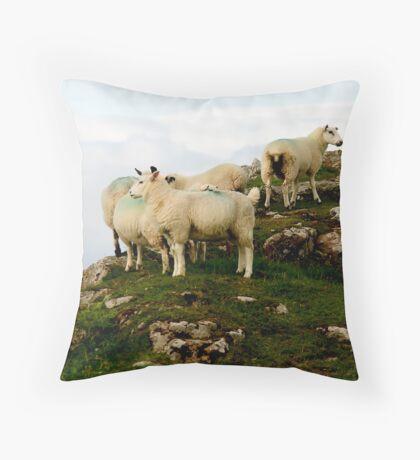 Bute Sheep Throw Pillow