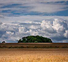 Big Blue Sky by Violaman