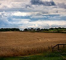 Over the fields towards Seaton Delaval Hall by Violaman