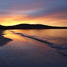 Howrah Beach on an early walk, Hobart, Tasmania, Australia by PC1134