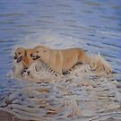 Sue's Gorgeous Dogs - Redhead Beach, NSW, Australia by Carole Elliott