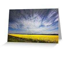 Canola in Spring Greeting Card
