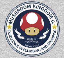 Mushroom Kingdom University by Chronotaku