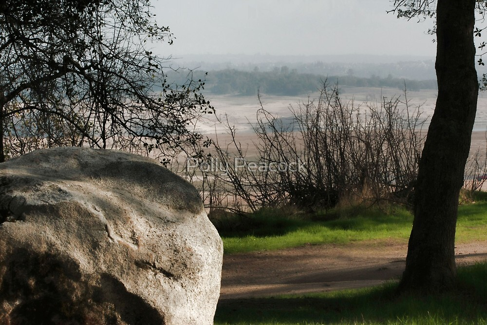 Lake Folsom State Park Overlook by Polly Peacock