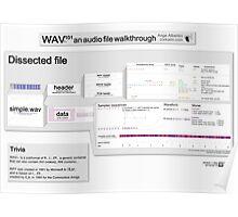 WAV101 an audio file walkthrough (Pro ver) Poster