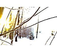 Crispy Sunrise Photographic Print