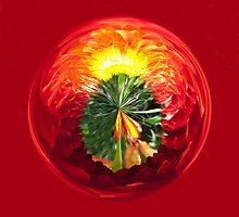 Fire Globe by Robert Gipson