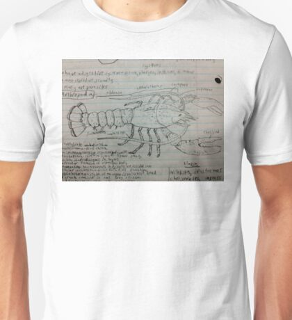 A Hand Drawn Lobster with Arthropoda  Facts Unisex T-Shirt
