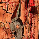 peeling paint on door by Manon Boily