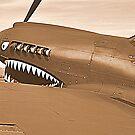 Warhawk by Bob Moore