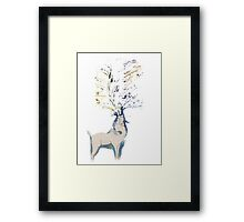 Stag of Colour Framed Print