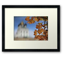 maple leaves Framed Print