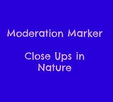 Moderation marker by Jeanette Muhr