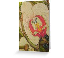 Phaleanopsis Greeting Card