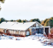 Rustic Chicken House by Richard Bean