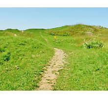 Meandering Path Photographic Print