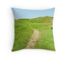 Meandering Path Throw Pillow