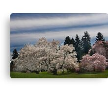A Winterthur Spring Canvas Print